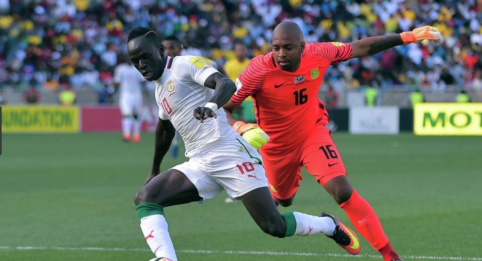 Хорватия — Сенегал прогноз и ставка на матч 8 июня