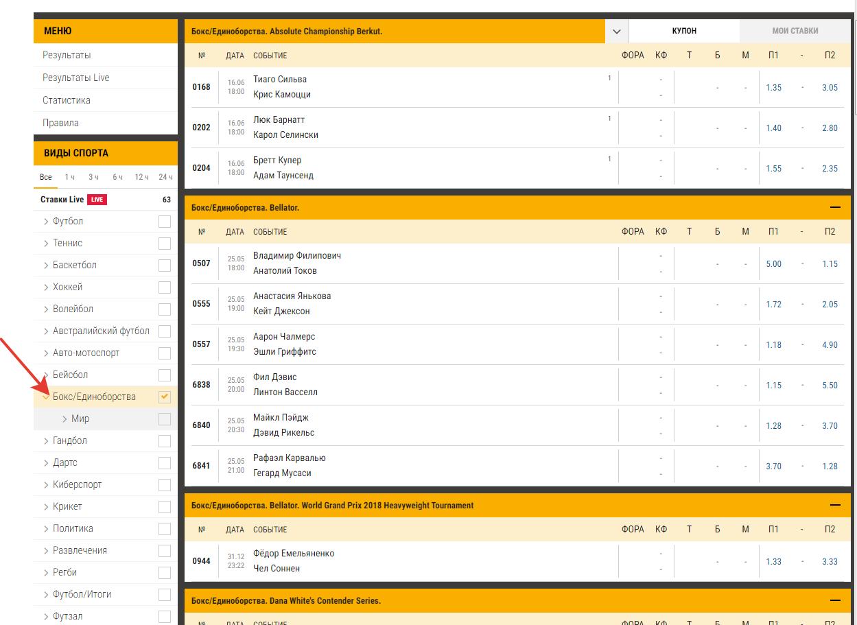 Дель Потро получил уайлд-кард на US Open
