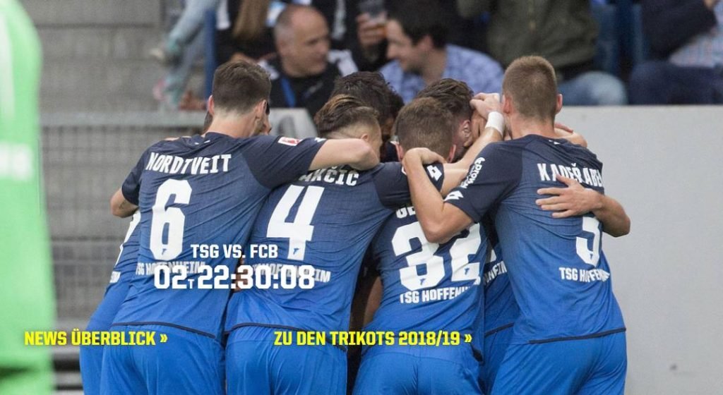 Прогноз на матч Чемпионата Германии Хоффенхайм – Бавария 18.01 1